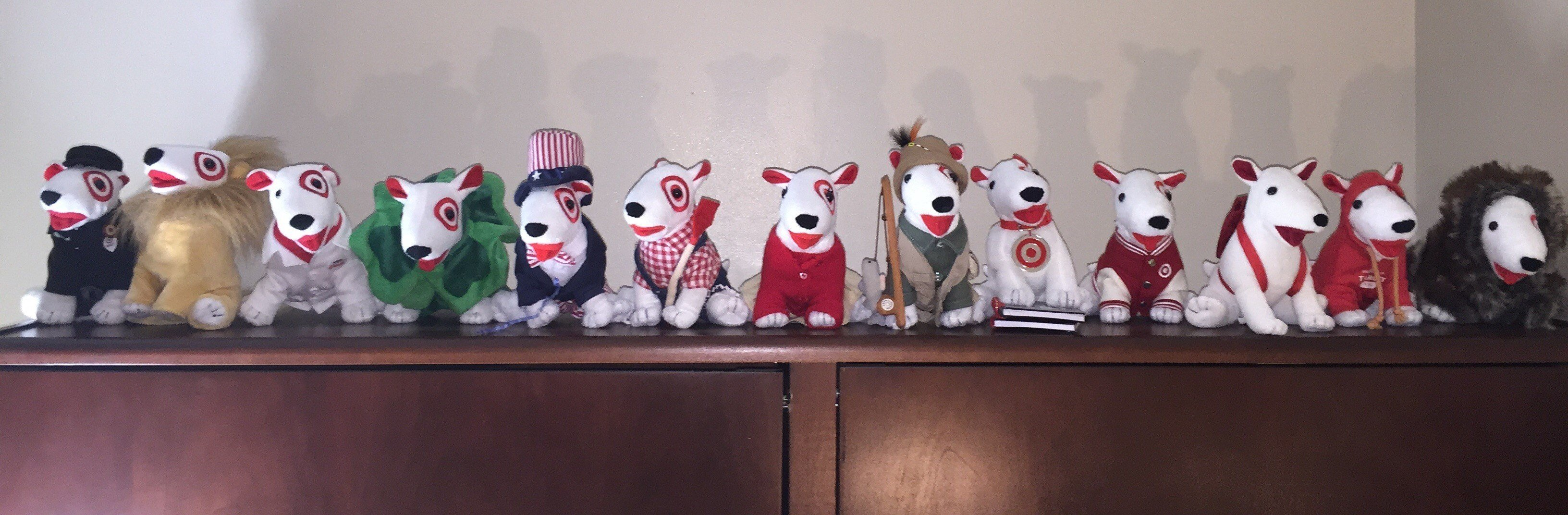 Clara Samuels, career associate at the UK Stuckert Career Center, proudly displays the 13 Target Dogs that Rodney Branum gave her before his death.