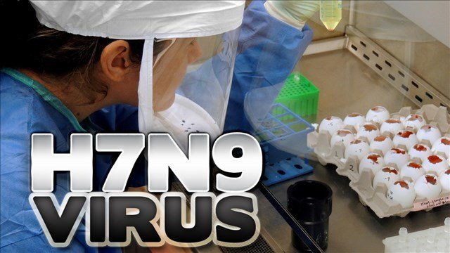 Avian Flu Confirmed in Alabama Poultry Flocks