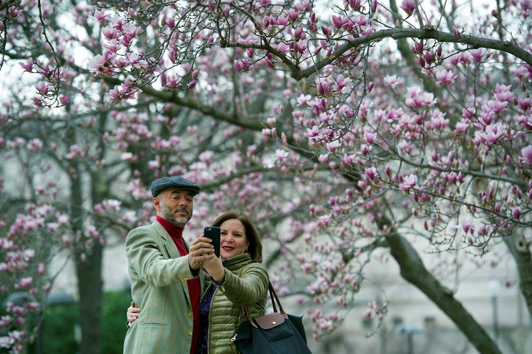 (AP Photo/Cliff Owen, File) FILE - In this Tuesday, Feb. 28, 2017, file photo, Fidelio Desbradel and his wife, Leonor Desbradel, of the Dominican Republic, take a selfie in front of a Tulip Magnolia tree in Washington. A selfie reveals more than...