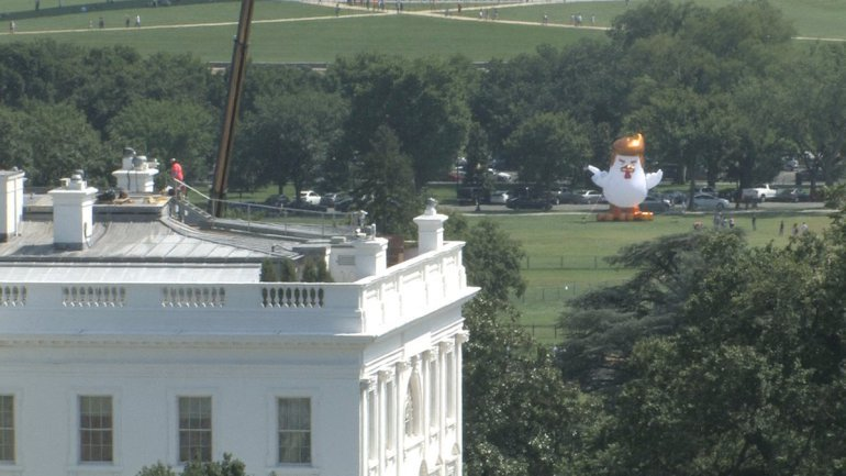 Enormous Donald Trump 'chicken' inflated near White House during protest
