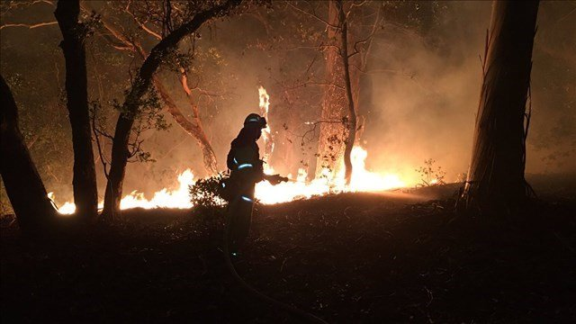 SF Firefighters Strike team 2254 at the Adobe Fire on Sonoma Mt Rd (SF Firefighters 798 / Twitter)