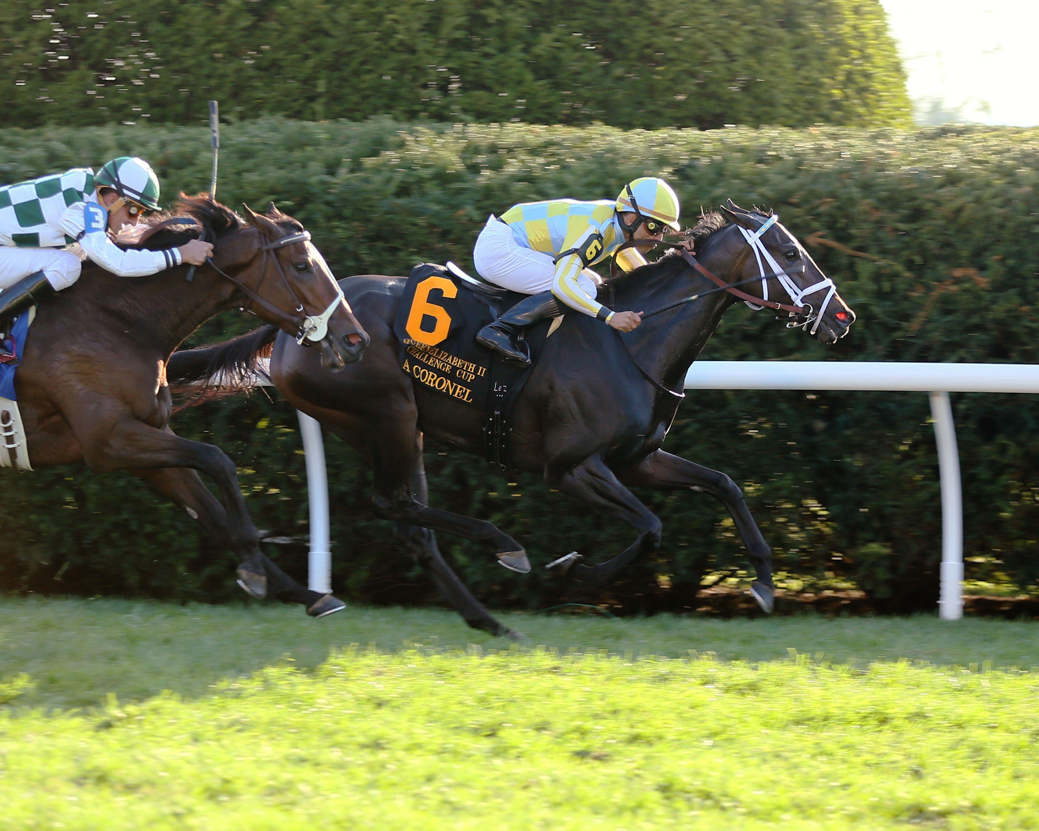 La Coronel stays ideal at Keeneland in QEII Challenge