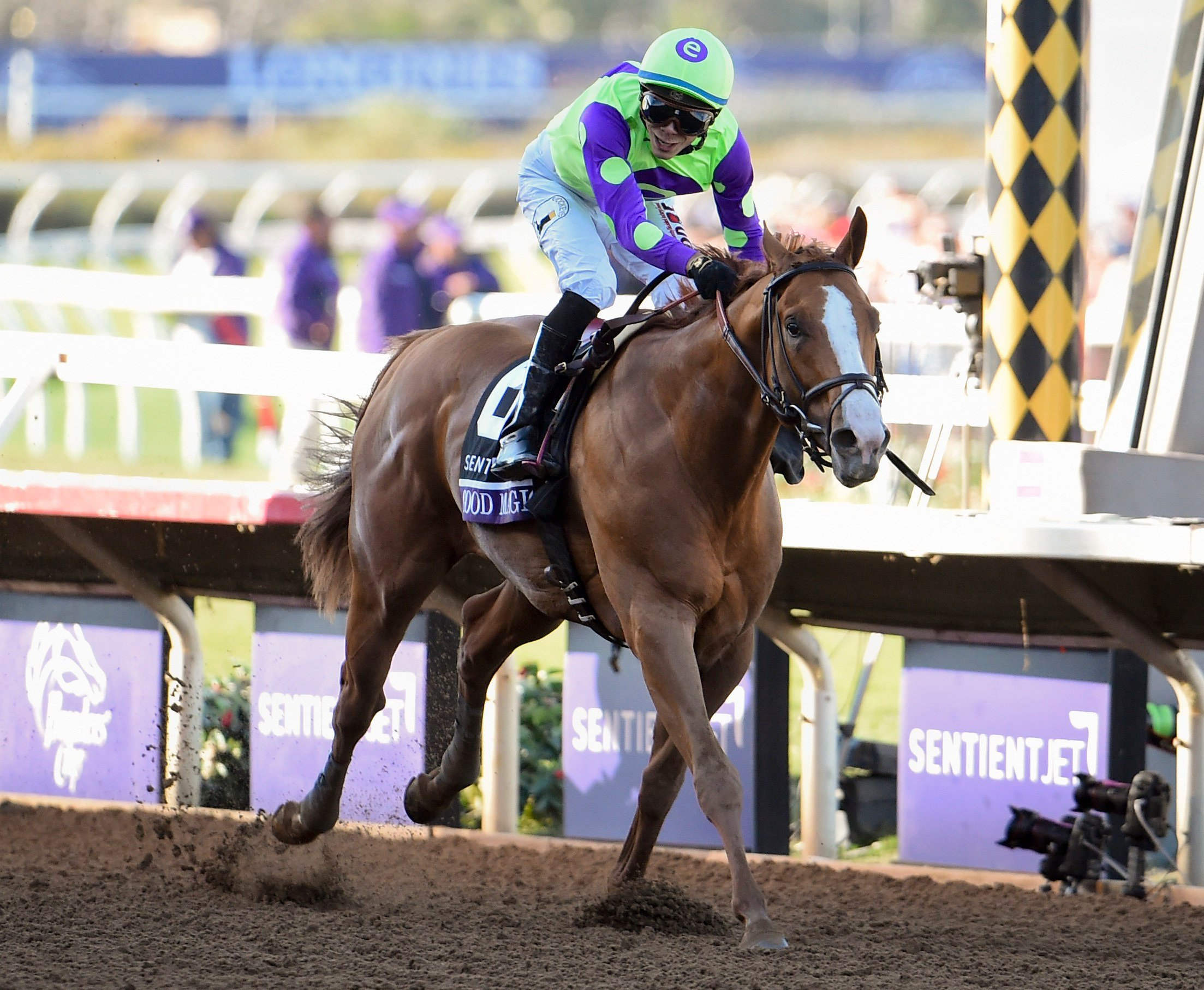 Maiden Good Magic takes the 2017 Breeders' Cup Juvenile
