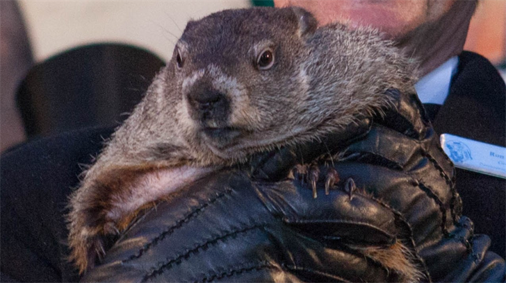 Groundhog Day 2018 prediction: How accurate is Punxsutawney Phil?