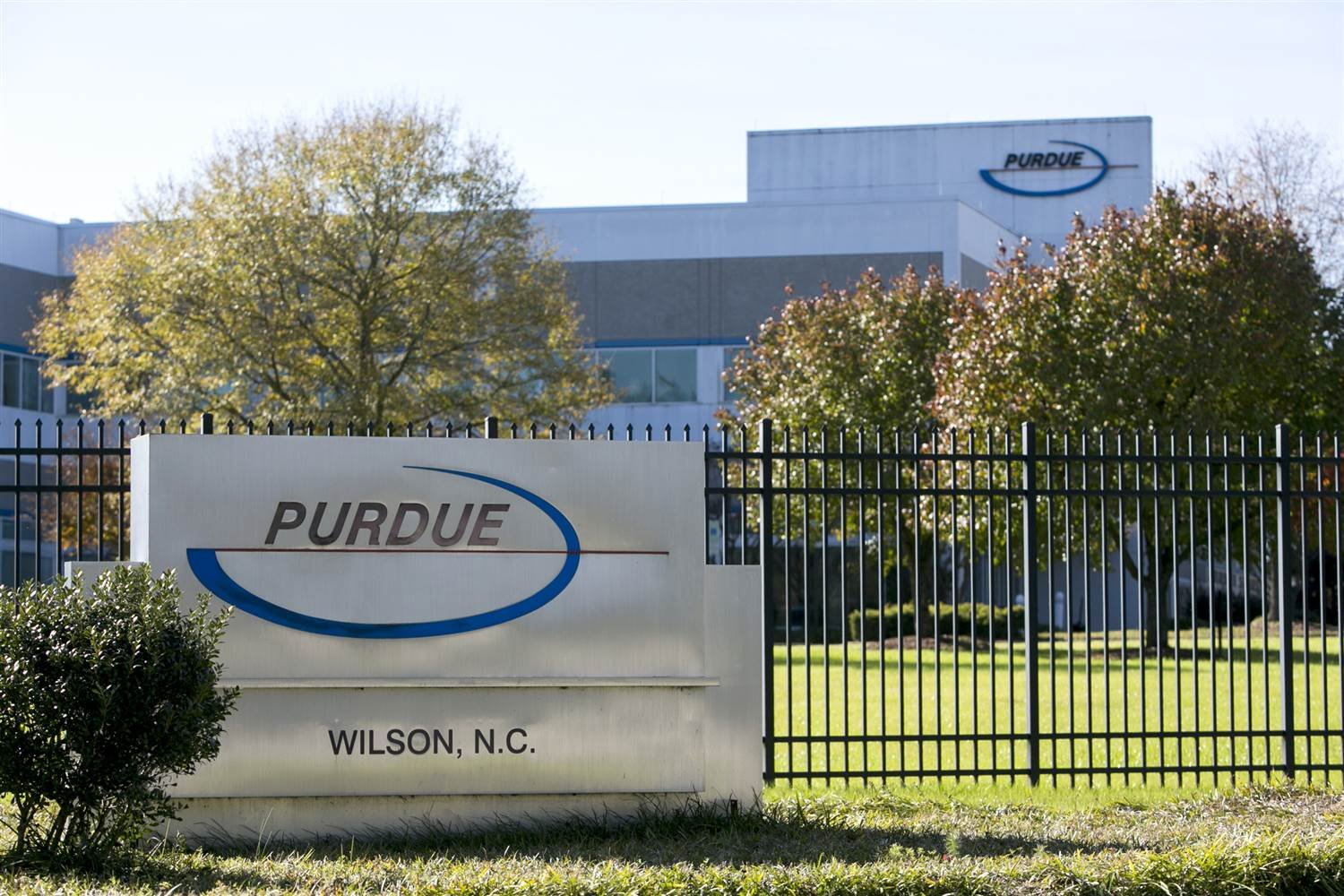 Purdue Pharma to stop marketing opioids to docs