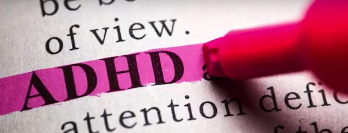 Michelle Martel Investigates the Impact of Hormones on ADHD